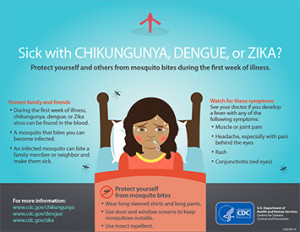 Zika virus diagnosis