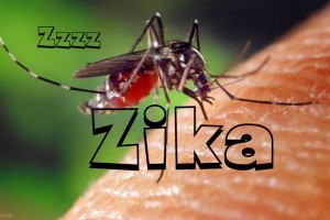 best Zika repellent
