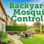 yard mosquito repellent