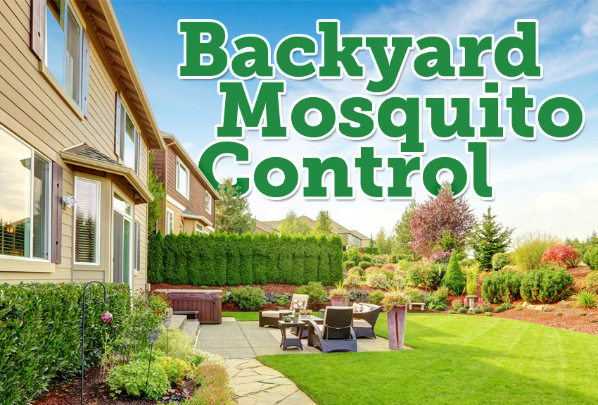 The Best Mosquito Granules For Backyards · Yard Mosquito Repellent
